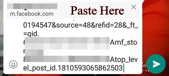 paste here